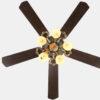 Living room decorative ceiling fan lights2