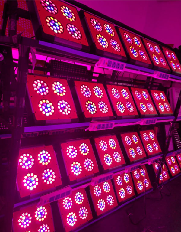 Aging-test-for-120W-200W-300W-350W-400W-500W-600W-LED-Grow-Lights
